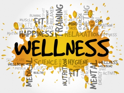 Wellness is the Name of the Game